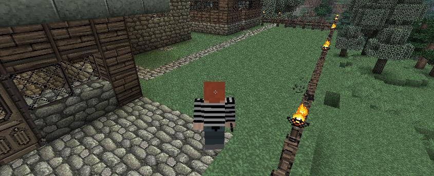 My Minecraft yard