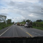On the road to Porto Barrios